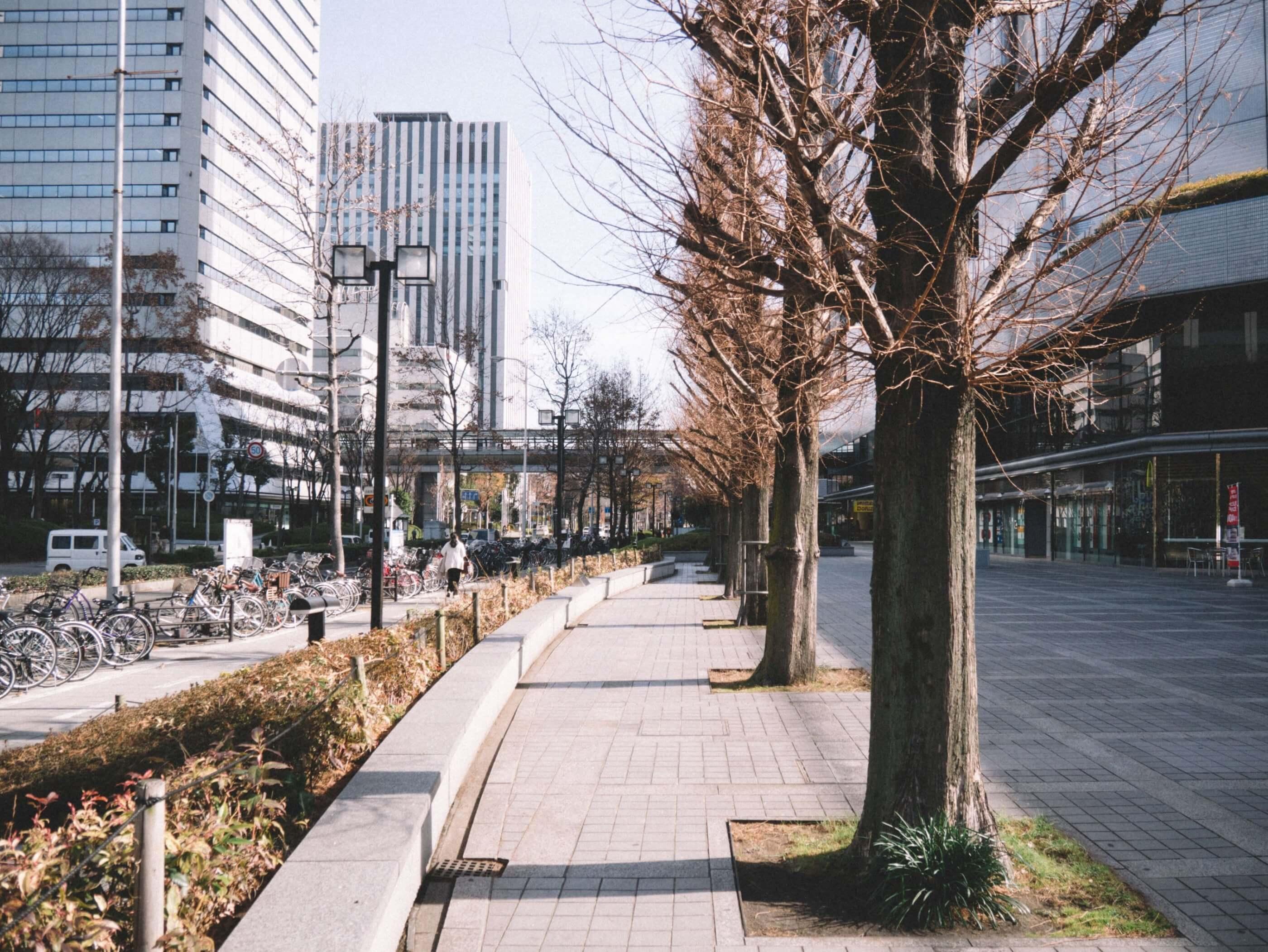 日本關西:再遊京·阪